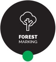 forest marking spray paints